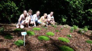 Z okazji 50 – lecia naszej Szkoły postanowiliśmy utworzyć ogródek.