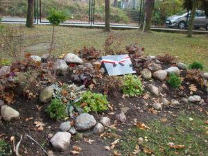 """Nasz nowy ogród """" Na skrzydłach orła"""" wzbogacił się o kolejne rośliny."""